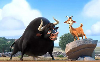 你对《公牛历险记》的观赏要求是什么?