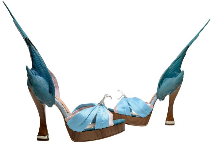 Shoes Pleasure and Pain (6) - Caroline Groves 'Parakeet' shoes