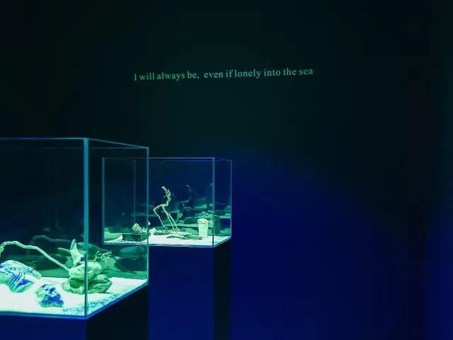 沈凌昊 :记忆生成又慢慢遗忘的过程