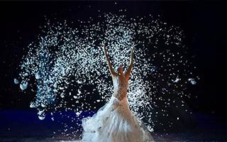《孔雀之冬》舞出生命的真谛