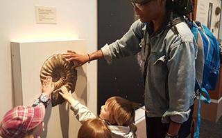 幼儿已成为博物馆重要的观众群体