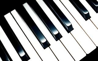 卡西欧流行钢琴吧|单人零基础成人钢琴课