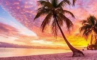因颜色而出名的沙滩