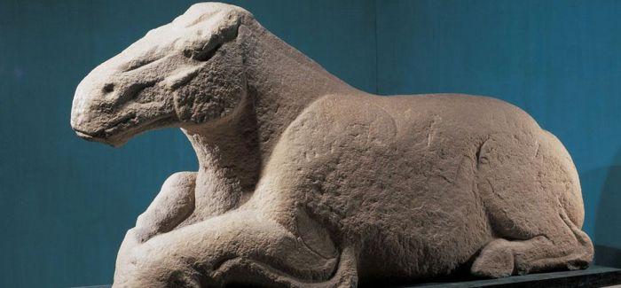 为什么汉代重视天马而轻视骆驼?