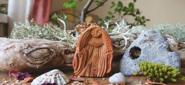 住在鳄梨壳里的小神仙们
