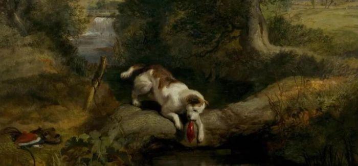 """在国外博物馆里""""安家""""的狗狗们"""