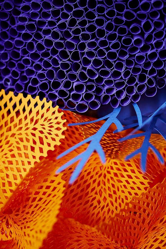 paper-art-coral-reef-11