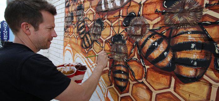 五万只蜜蜂的世界之旅