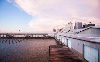 纽约军械库艺术周开启 你准备好了么?