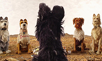 《犬之岛》:爱狗人士的福音