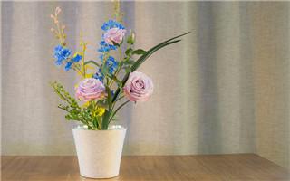 七叶花艺|最适宜现代家居生活的插花体验