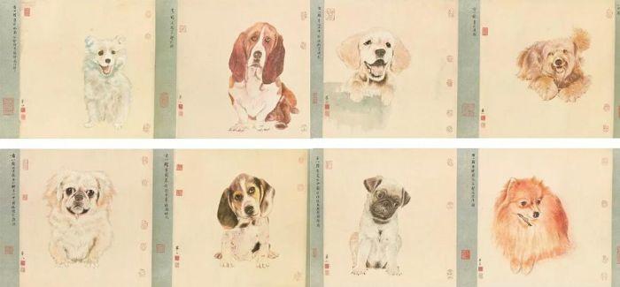 """""""八犬""""与""""五色鹦鹉""""的""""较量"""""""