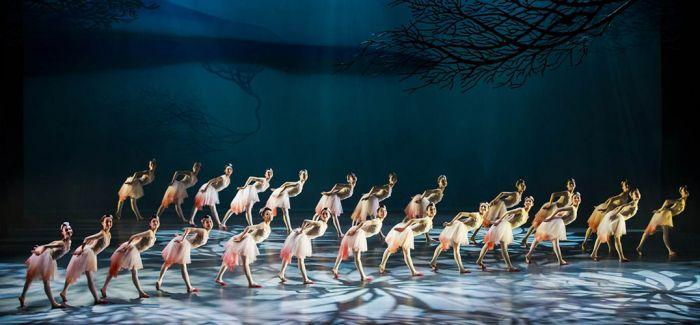 舞剧《朱鹮》传递人与自然界环保理念