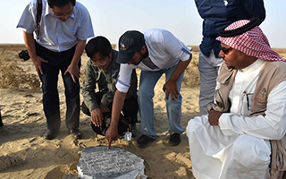 海上丝绸之路新资料:沙特古港口遗址发现中国瓷片