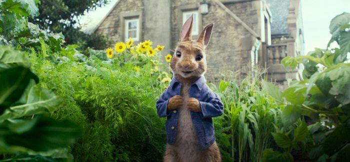 《比得兔》中的英美文化差异