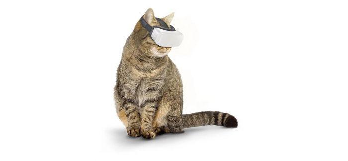 """""""猫咪VR"""" 让你的宠物不再淘气"""