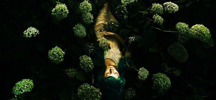 花花草草的超现实世界