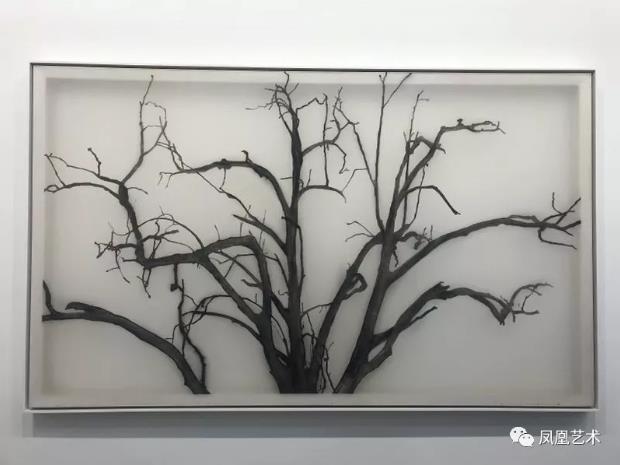 A06-《树》谢帆,2018