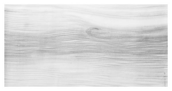 4.春缈图-69x135cm-2011