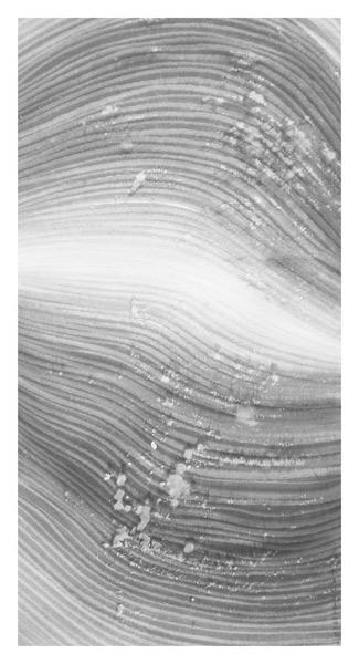 5.春潭醉无边-127x65cm-2011