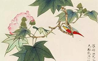 于非闇《花鸟册》的优雅与体面