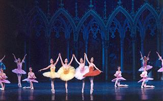 """上海芭蕾舞团为《睡美人》设置""""专属舞段"""""""