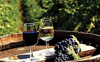 中国葡萄酒消费格局转变