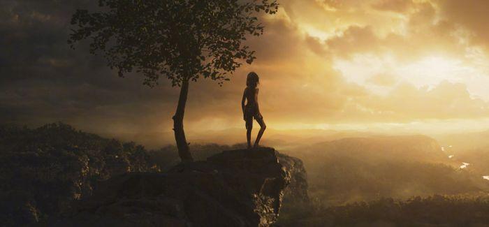 森林之子毛克利 森林冒险旅程即将启程