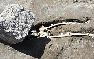 庞贝古城考古新发现:火山碎石下较完整骨架