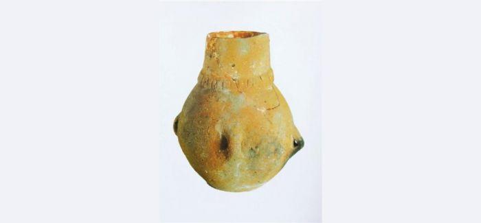3500年前古灌渠 为水稻种植传播路径提供证据