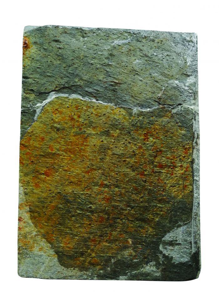图2歙石板研底面图