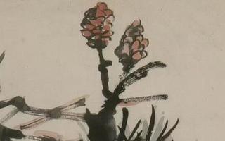 金石之气 书画同源 吴昌硕笔下的松