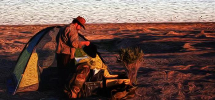 陆上行舟:艺术具有一种可以撬动社会的力量