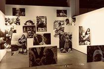 看展丨第二届银川双年展「从沙漠出发 - 边界上的生态学」