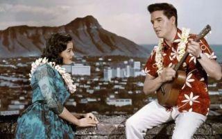 """这个夏天你需要一件""""夏威夷"""""""
