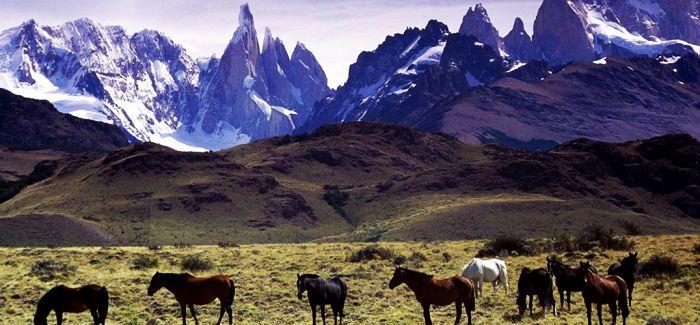 阿根廷的小八卦