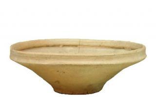 蠢萌的陶器 带给你生活的美感