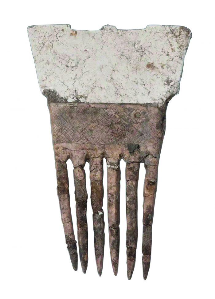 图3 玉背象牙梳