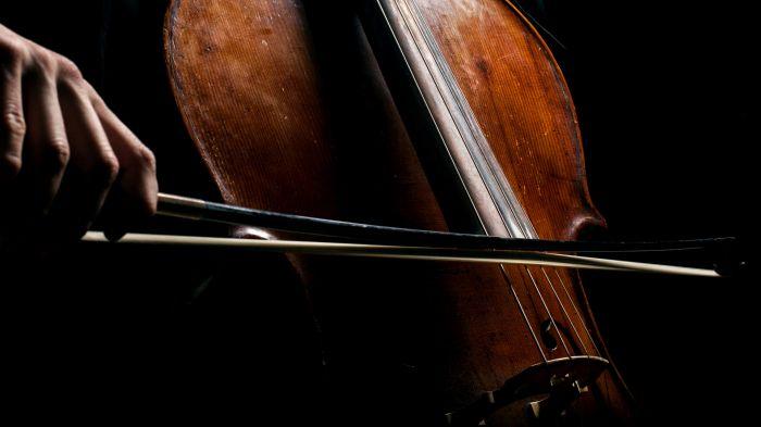 protos_violoncello_bg