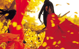 中国电影在非洲大受欢迎