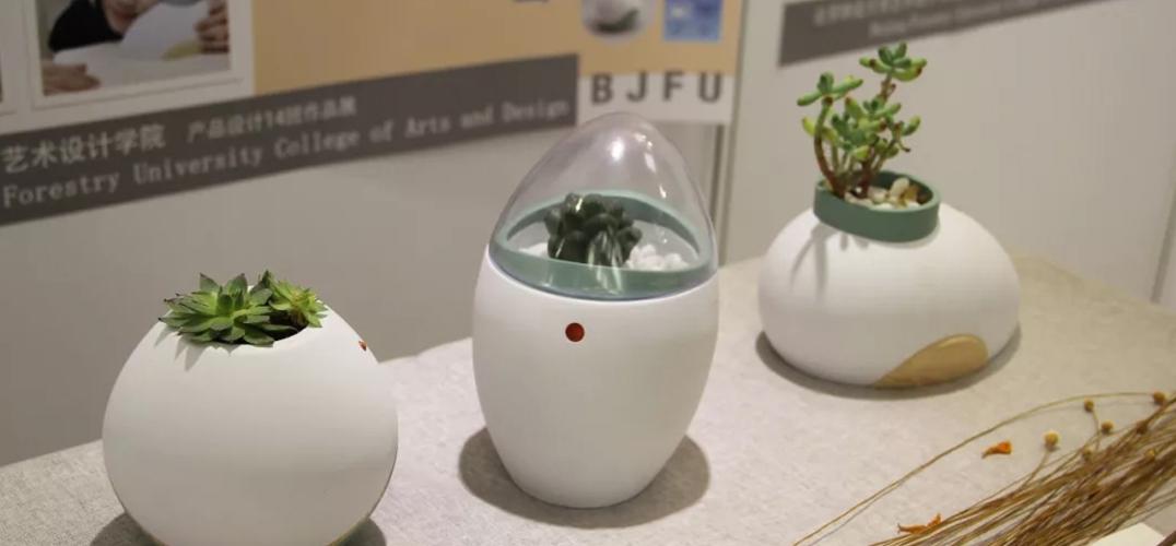 北京林业大学艺术设计学院毕业设计作品