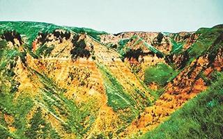 黄土高原212万年前已现人迹