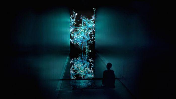 digital-art-body-immersive-exhibition-tokyo-teamlab-1