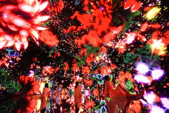 digital-art-body-immersive-exhibition-tokyo-teamlab-3