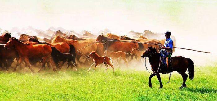 《永远的窝阔台》 用国际马术讲述蒙古族历史