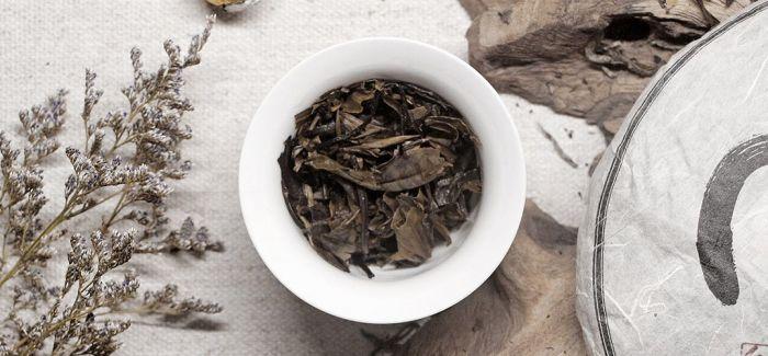 茶 让留学生爱上中国