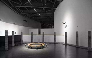 凤凰 · 威狮带来福州前所未有的科技+艺术大展