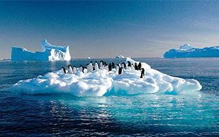 中国游客成为极地旅游新客源