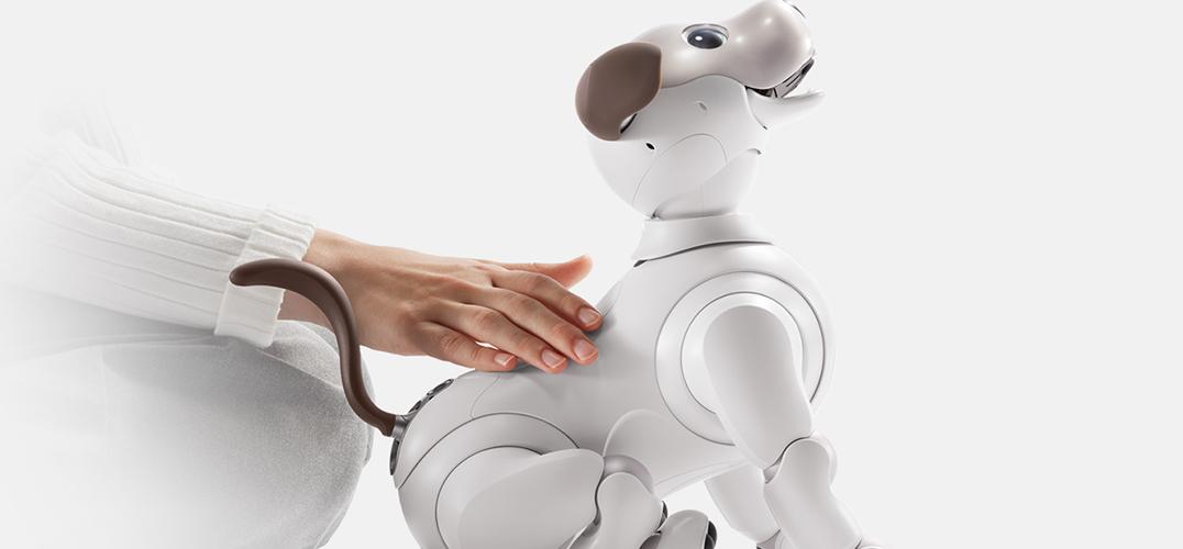 机器宠物狗 我们未来的朋友