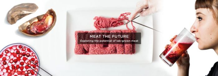 Next Nature Networks - Meat the Future2
